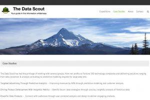 Data Scout Case Study Webpage Screenshot